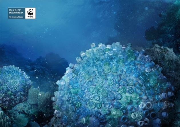 brain-corals.jpg?w=630&h=445