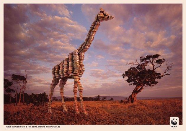 giraffe.jpg?w=630&h=445