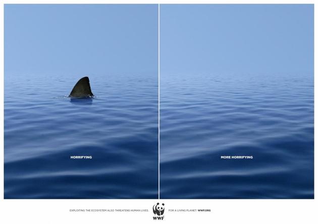 wwf-shark.jpg?w=630&h=445