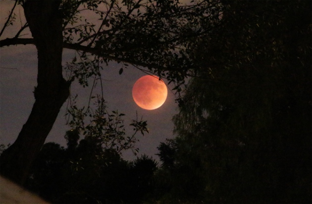 supermoon-eclipse-01